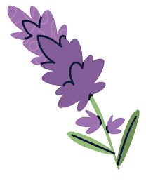 lavender e1632946511928